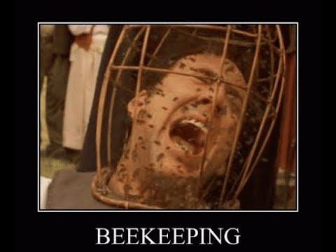 Приколы, юмор, Пчеловодство и смех. Приколы с насекомыми. ЛУЧШИЕ ПРИКОЛЫ
