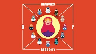 What are the Branches of Biology?