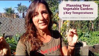 Planning your vegetable garden - 3 key temperatures