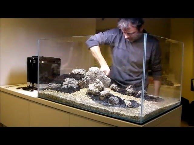 """peHa:68 - Zakładanie akwarium naturalnego - """"Four"""""""