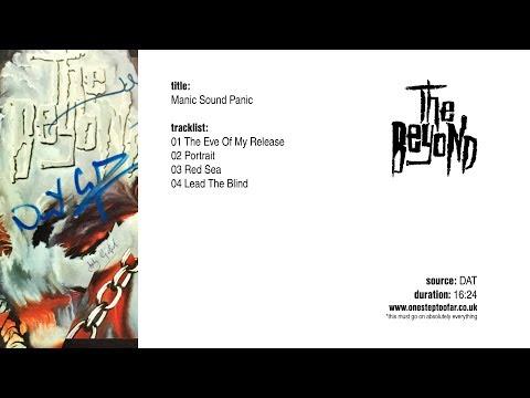 Manic Sound Panic EP