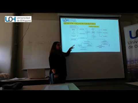 La patogénesis de la hipertensión arterial