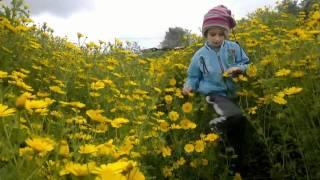 preview picture of video 'בית אורן. אביב 2011. טיול חרציות משפחתי'