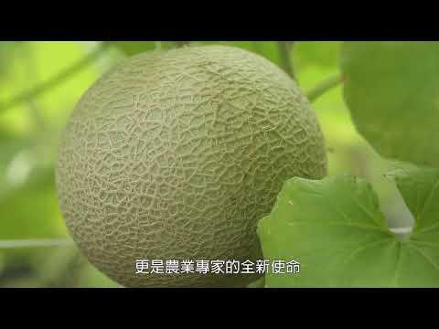 科技化的臺灣設施農業 1分鐘 中文版