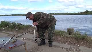 Рыбалка осенью на москва реке воскресенск