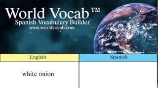 Free Spanish Quick Vocab™ :White Onion - la cebolla blanca