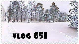 Влог 10.11.16 Сумка в роддом   Вернули машину   Снегопад