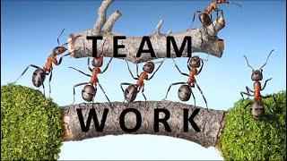 #Teamwork | #Motivational Message | #whatsapp status video | 30 Second Video | #Life quotes 2019