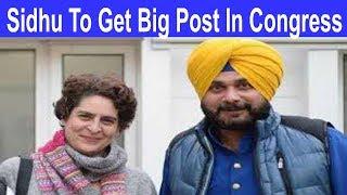 Navjot Sidhu को कांग्रेस में मिल सकती है बड़ी जिम्मेदारी
