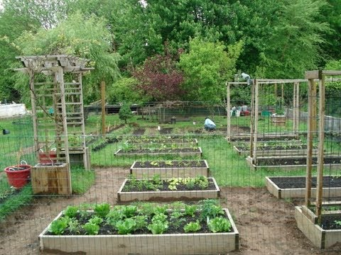 Backyard Organic Gardening Ideas – How My Dad Transformed My Mom's Garden (Part 1)