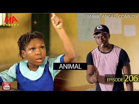 Mark Angel Comedy – ANIMAL (Episode 206)