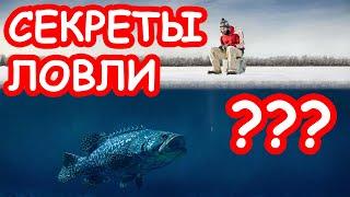 Зимняя рыбалка для начинающих советы
