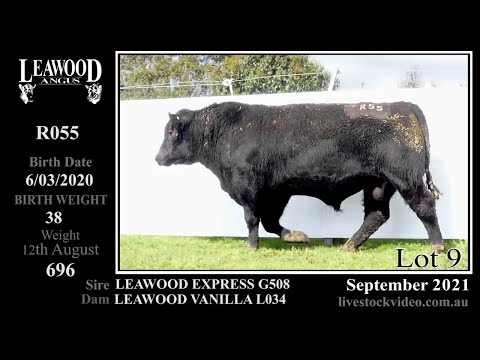 LEAWOOD EXPRESS R055
