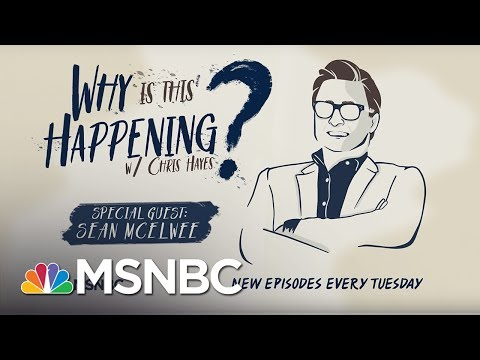 The Left Wing Of The Democratic Party With Sean McElwee | Why Is This Happening? - Ep 20 | MSNBC
