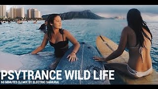 Psychedelic Progressive Psytrance Wild Life Experience En Masse 2016 DJ Mix by Electric Samurai