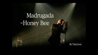 Madrugada  Honey Bee