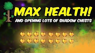 Terraria: MAX HEALTH! (finally.)