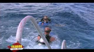 preview picture of video 'Cane Bay Scuba, St. Croix, USVI'
