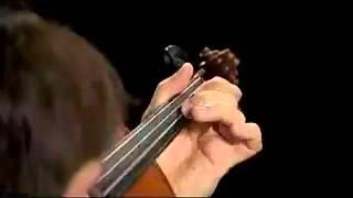 ViolinMasterclass.com  Brahms Violin Concerto 1st movement