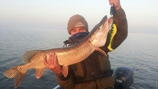 Казахстан рыбалка на щуку в сентябре