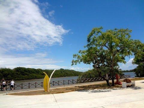 Visita ao Parque dos Cajueiros ou Gov. Antonio Carlos Valadares em Aracaju