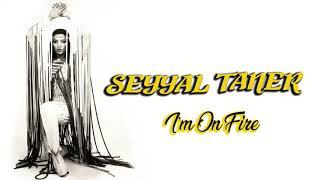 Seyyal Taner / I''m On Fire