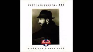 Juan Luis Guerra - Angel Para Una Tambora (1990) [BuenaMusicaRD]