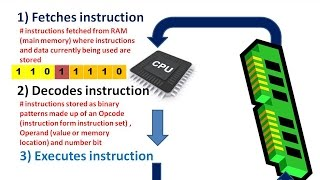 what does the CPU do ; how is the CPU affected by clock speed, cache memory and number of cores