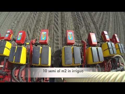 MaterMacc MS Twin szemenkénti vetőgépek