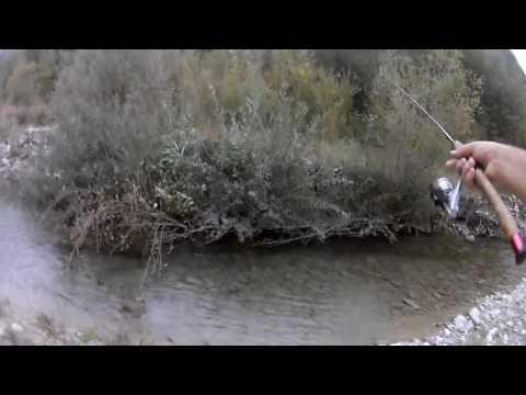 Su che pesce in un gioco a pesca in beccate