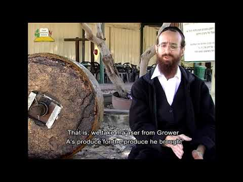 Olive Press in Benei Darom