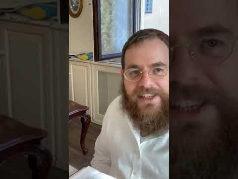 Sábát 54 – Napi Talmud 117 – Póráz, kantár, tőgyvédő, bilincs #hocaa #háziállatok