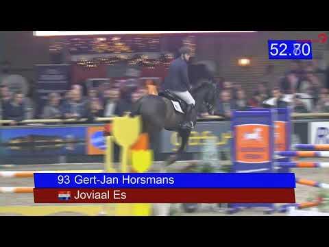 stallion competition Zuidbroek