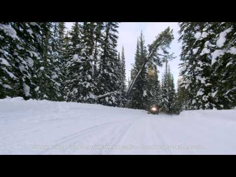 2016 Arctic Cat Bearcat 2000 LT in Twin Falls, Idaho - Video 1
