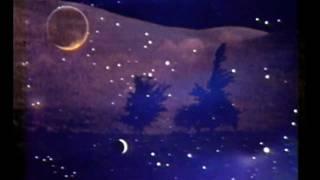 Isaac Delusion ☀ Midnight Sun