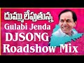 Latest TRS Dj songs || Gulabi Jenda TRS Party DJ Song || Latest Dj Songs ||Saaho Movie  DjSongs video download