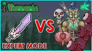 Terraria - Meowmere vs All Bosses (Expert Mode) | Biron
