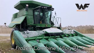 We froze up the combine! Corn Harvest 2019 Vlog 21