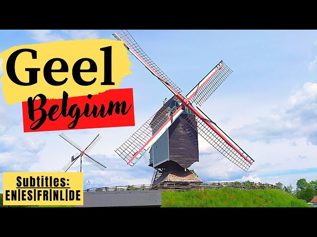 Vidéo Prononciation de Geel en Néerlandais
