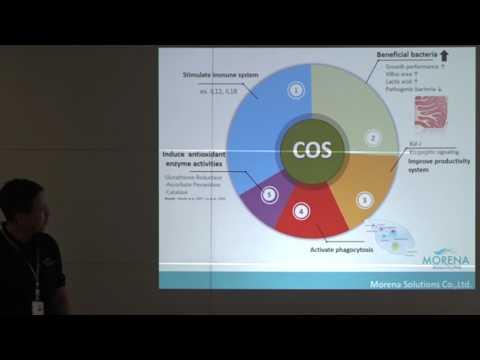 , title : '170512 ข้อมูลผลิตภัณฑ์ GIB products - Dr.MuongKhon Taveesubwattana
