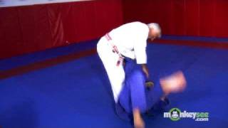 Basic Judo - Trips and Throws to the Front