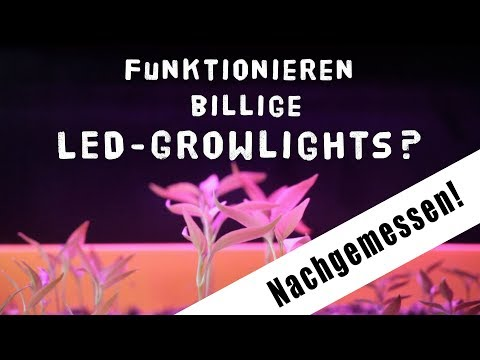 Taugen billige Wachstums LEDs/Growlights - Spektrum nachgemessen + Growbox