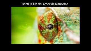 Marillion - She Chameleon (Traducción al español)