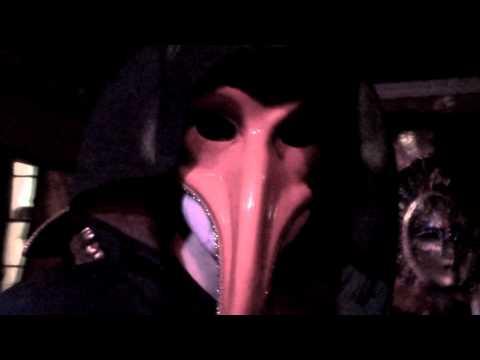 PINK NARCISSUS 'Masquerade'