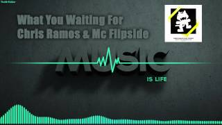 What You Waiting For - Chris Ramos & MC Flipside