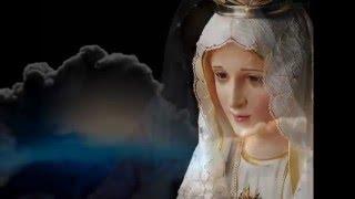 Ave Maria No Morro-Instrumental cover