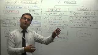 About CS Executive