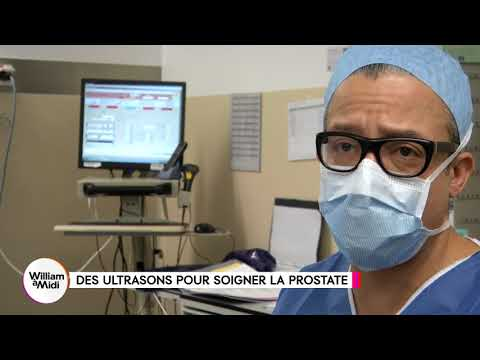 Hypophyse glande de la prostate