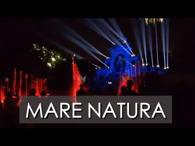 Mother Nature (MAC Festival) | LA MERCÈ 2018