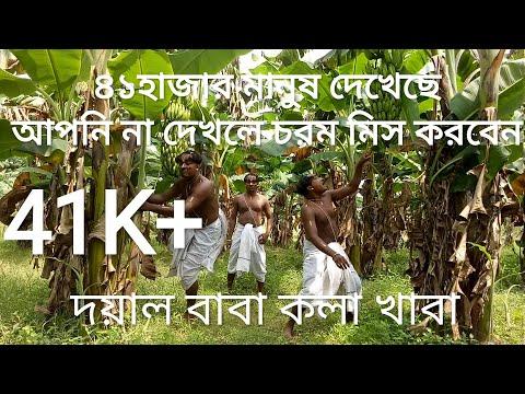 Doyal Baba Kola Khaba | Gachh Lagaiya Khao | NB Music Production